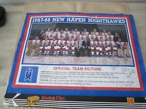 RARE 1987-88 NEW HAVEN NIGHTHAWKS PHOTO W/14 AUTOGRAPHS JANECYK McDONOUGH-ONLY 1