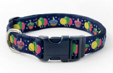 Douglas Paquette PARTY TIME Nylon & Ribbon Adjustable Dog Collar, Harness