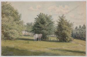 """Gustav Barbarini (1840-1910), """"Grazing Horse"""", Watercolour, 1901"""
