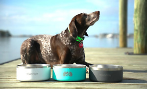 Toadfish Non-Tipping Pet Insulated Stainless Steel Dog Bowl with Lid Cover