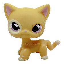 Littlest Pet Shop Rare Yellow Orange Shorthair Cat Purple Moon Eyes LPS #855