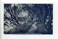 Madison Wi Wis Walk in Tenney Park, 1908 antique postcard