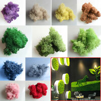 100 g Natural Norwegian Reindeer Moss Preserved Dried Craft Flower Stamen Decor