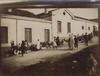 Snapshot Africa Del Nord Fotografia Originale Vintage Citrato Ca 1900 ND41