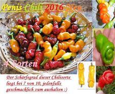 40x Lustige Chili Rot Gelb Grün Orange Samen Garten Pflanze Gemüse scharf bunt