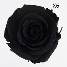 Verdissimo Preserved Rose Black 6 Pack