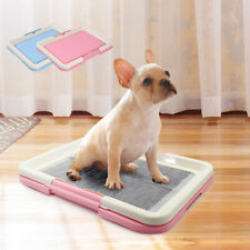 """Puppy Dog Potty Tray Pet Pee Pad Holder Indoor Dog Toilet Blue Pink 18.5""""x13.5"""""""
