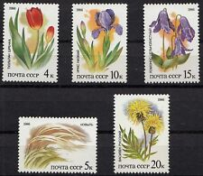 Russia - Soviet Union 1986 Mi.5573-77 Protected plants of the steppes set (83023