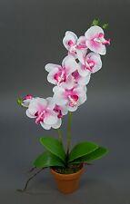 Orchidee Real Touch 60cm rosa-weiß im Topf GA künstliche Blumen Kunstblumen
