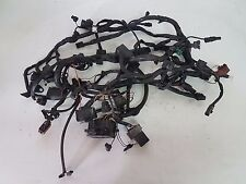 2507602 ELECTRIC SYSTEM TRIUMPH WIRING LOOOM HARNESS