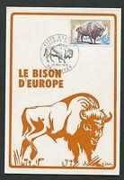 FRANCE MK 1974 BISON BISONS WISENT MAXIMUMKARTE CARTE MAXIMUM CARD MC CM d1146