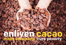 Box of Single Origin Cacao Beans (cocoa beans) - 15 pounds - from Enliven Cacao