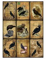 Halloween Ravens & Crows Glossy Finish Card Making Topper / Craft Embellishment