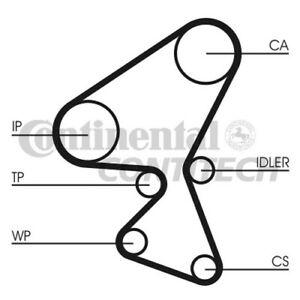 CT1063K2 CONTITECH TIMING BELT (Citroen,Ford,Peugeot) NEW O.E SPEC!
