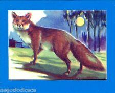 ANIMALI - Lampo 1964 - Figurina-Sticker n. 66 - VOLPE -New