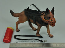 1/6  Scale K9 Police dog SoldierStory SS 097 SDU