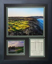 11x14 FRAMED TORREY PINES GOLF COURSE TIGER WOODS WILLIAM BELL 8X10 PHOTO