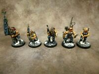 Warhammer 40k Astra Militarum Catachan Command Squad Well Painted