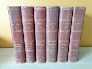 Buffon oeuvres complètes 1853 6 volumes mammifères oiseaux matières générales