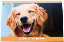 Cute Puppy/Dog Artwork Postcards 6 Designs Printed 250 gsm Card
