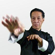 Advanced Wing Chun/Chi Sao Seminar (5) DVD Set