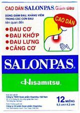 Salonpas Hismitsu Pain Relieving Heat Patch