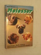 weisse / molosser