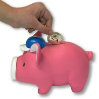 VIDEO and Cute Pink Pig Piggy Bank Toy Pig Coin Holder Decorative Savings Bank