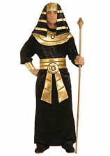 Pharaoh - Adult Egyptian Costume