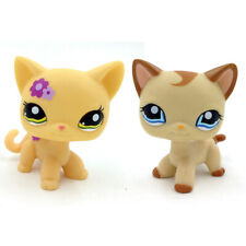 Lps 1962 Yellow Flower Green Eyes 1024 Caramel Short hair Cat Littlest Pet Shop