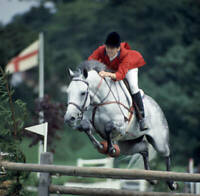 Equestrian Mary Chapot Riding White Lightning At Hickstead 1968 OLD PHOTO