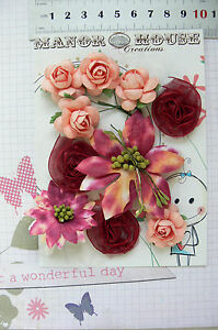 ASTER, BLOSSOM & ROSE Flowers Paper BURGUNDY & CORAL 10 Pk 25-55mm across VC3