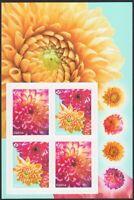DAHLIA, DAHLIAS = GARDEN FLOWERS = Booklet Page of 4 MNH Canada 2020