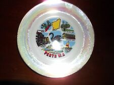 VINTAGE COLLECTABLE GILDED DISPLAY PLATE PETROL LUSTRE PERTH WA BOLD COLOURS