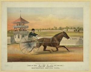 Lula,Rochester Driving Park,Horse Racing,Harness Racing,Equestrian,c1875 4698