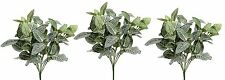 Set of 3 27cm Artificial Fittonia Plant - Houseplant - Office Plastic Plant