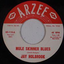 JAY HOLBROOK: Mule Skinner Blues ARZEE Rocker 45 Bluegrass HEAR