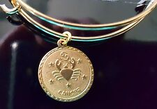 Gold Plated Vintage Cancer Zodiac Astrology Wire Bangle Bracelet With Clasp