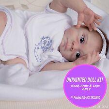 Honest Company•°°CARDINALS°°• Bird print diapers for Reborn set of 5 NEW sz.2