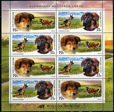 2016. Russia. DOGS.The German Shepherd and the Scottish Shepherd (collie). Pane
