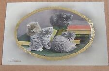 "Postcard Early Embossed cat  Card ""Trespassers "" Wildt & Kray 2935"