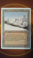 Taiga - Magic the Gathering - Revised Edition - Tracked Shipping #2