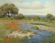 Home Decor HD Canvas print Oil Painting Texas, Landscape, Tree  NO Frame 14Fj346