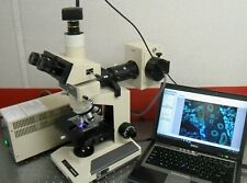 Olympus Bh2 Bhtu Fluorescence Microscope Trinoc Photo