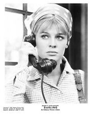 JULIE CHRISITIE scene still on phone from DARLING -- (a778)