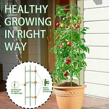 Garden Vegetable Flower Metal Rustproof Trellis For Climbing Plants Support T9M0