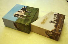 Pink Floyd Atom Heart Mother PROMO EMPTY BOX for jewel case,japan mini lp cd