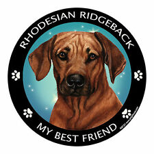 My Rhodesian Ridgeback Is My Best Friend Dog Car Magnet
