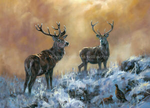 Stag and Grouse Christmas Cards pack of 10 by John Trickett. C512X New