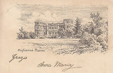 1484) MIGLIARINO PISANO.